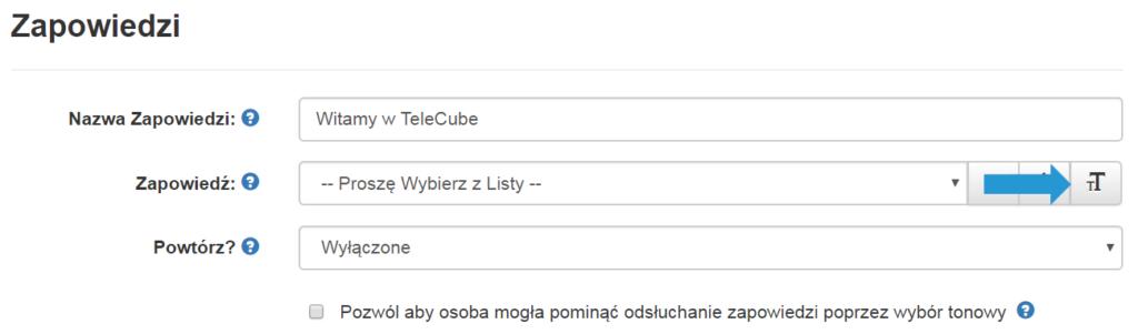 Screen pokazujący gdzie wPanelu Klienta znajduje się wirtualny lektor
